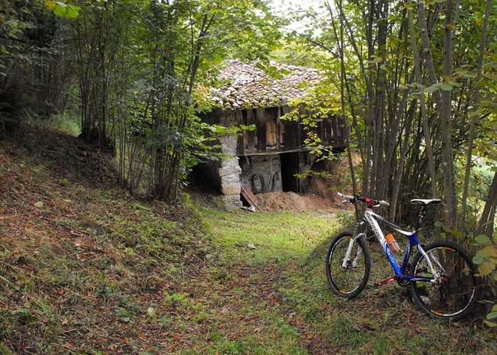Mountain BIke en Asturias, rutas en bicicleta con guía en Piloña