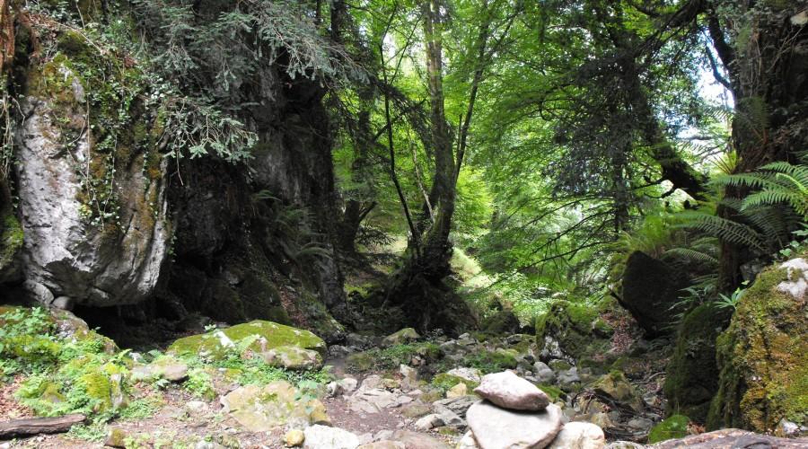 ruta de la viescona del sueve